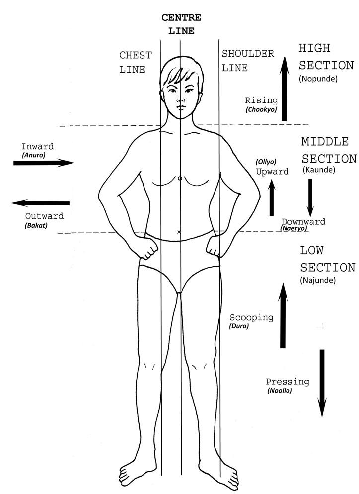 body-levels