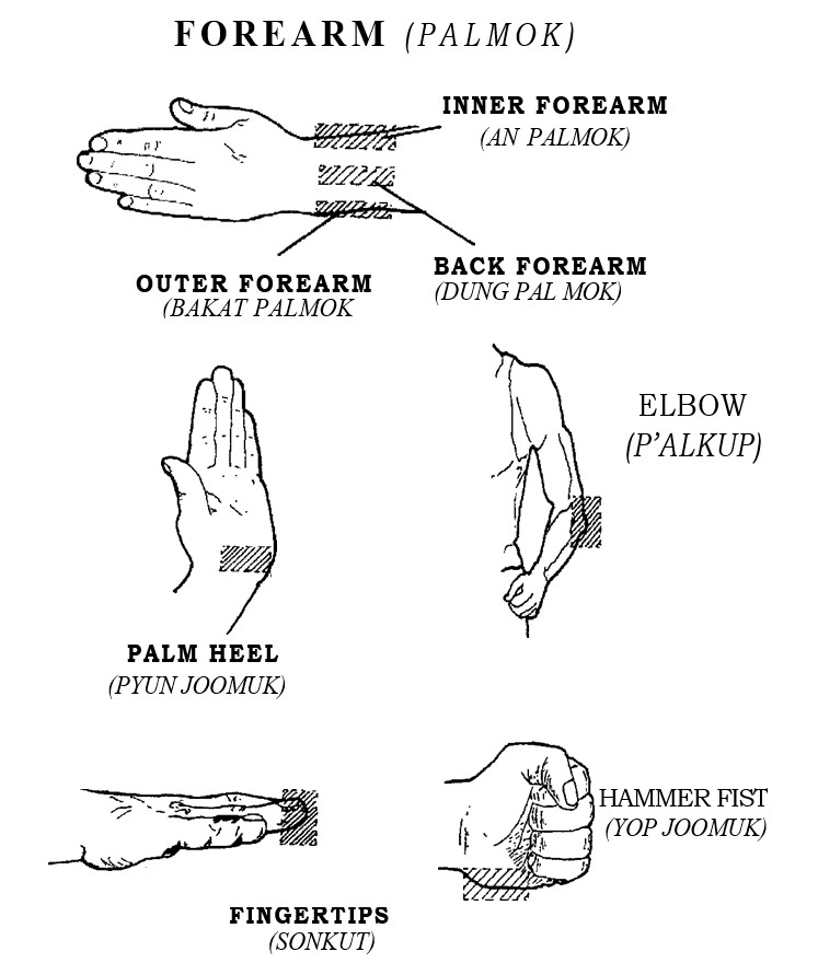 hand-and-arm